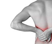 Back Arthritis Back Pain