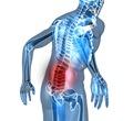 best pain doctor low back pain 1
